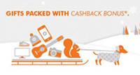 Discover Holiday Cashback Bonus